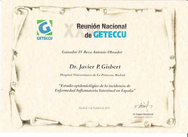 Beca/premio Antonio Obrador-Estudio sobre la incidencia de la EII en España